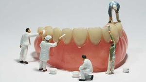 Zahnarztpraxis Dr. Daniela Felsmann in Lübben, PZR